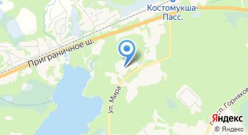 Костомукшская Городская больница кабинет Узи на карте