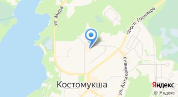 Костомукшская бухгалтерская компания на карте