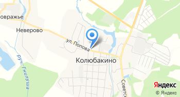 Колюбакинский игольный завод на карте