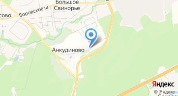 Ankudinovo-life.com на карте