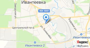 Ивантеевская Городская ветеринарная клиника на карте