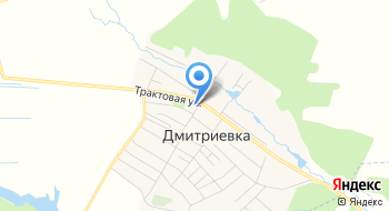 Дмитриевская участковая больница на карте