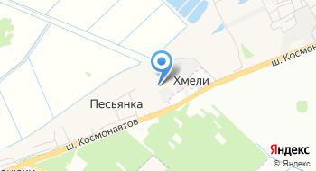 Интернет-магазин Zoo59.ru на карте