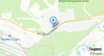 Пермские автобусные линии на карте