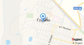 ТОРМ по г. Горняку Межрайонной ИФНС России №12 по Алтайскому краю на карте