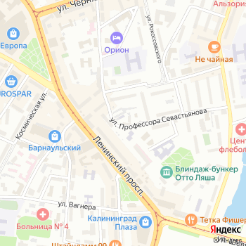 Антилопа на Яндекс.Картах
