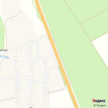 Орхидея на Яндекс.Картах