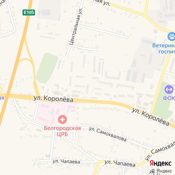Продуктовый магазин на Яндекс.Картах