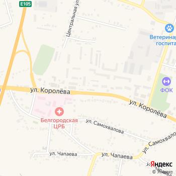 Руслан и Людмила на Яндекс.Картах