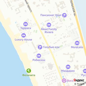 Голубые ели на Яндекс.Картах