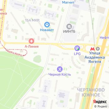 Стайер на Яндекс.Картах
