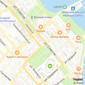 Зеленый попугай на Яндекс.Картах