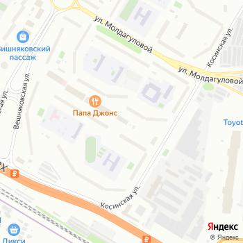 Кинология на Яндекс.Картах