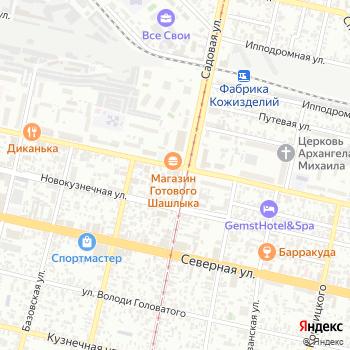 Дельфин на Яндекс.Картах