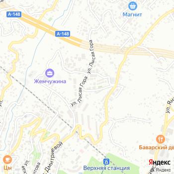 Дак на Яндекс.Картах