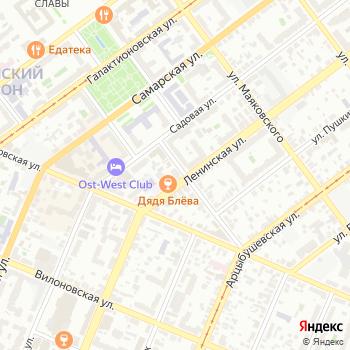 Белый медвежонок на Яндекс.Картах