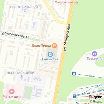 Beetle на Яндекс.Картах