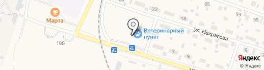 Вихоревский ветеринарный участок на карте Вихоревки