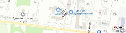 Папайя на карте Братска