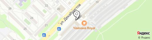 Игуана на карте Ангарска