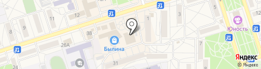 Лесник на карте Шелехова