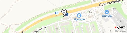 Плюшка на карте Марковой