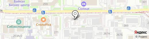 Лохматая ворона на карте Иркутска