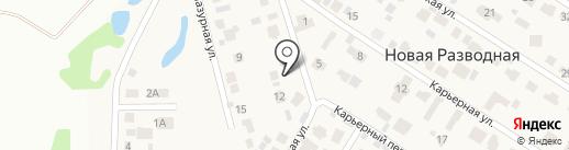Служба по откачке выгребных ям на карте Новой Разводной