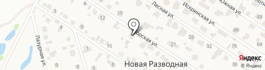 АйТи-решения на карте Новой Разводной