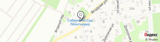 Сибирский сад Леонтьевых на карте Новолисихи