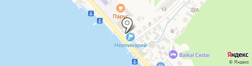 Нерпинарий на карте Листвянки