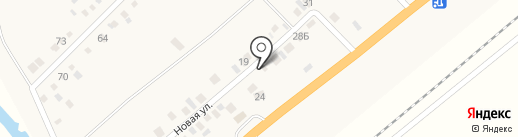 Света на карте Вознесеновки