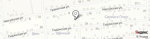 Удачный на карте Поселья
