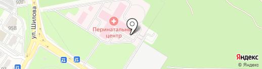 Забайкальский краевой перинатальный центр на карте Читы