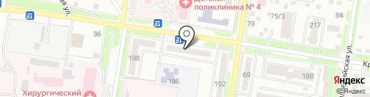 Айболит на карте Благовещенска