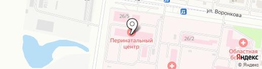 Амурский областной перинатальный центр на карте Благовещенска