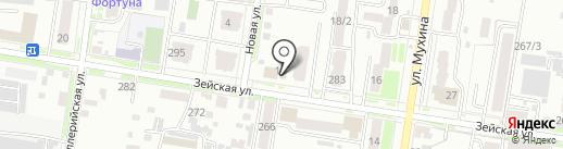 Болгарин на карте Благовещенска