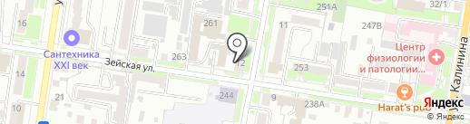 Дизайн-Сервис на карте Благовещенска