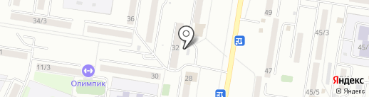 Амурский бройлер на карте Благовещенска