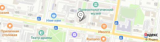 Арника на карте Благовещенска