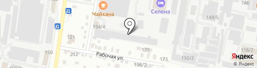 Енот на карте Благовещенска