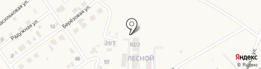Лесной на карте Чигирей
