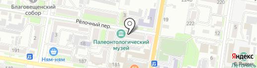 Амурский научный центр ДВО РАН на карте Благовещенска