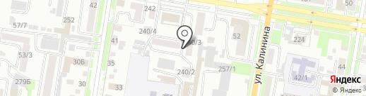 Альтернатива-ДВ, АНО на карте Благовещенска