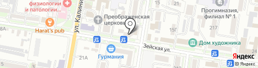 РАРИТЕТ плюс на карте Благовещенска
