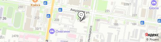 Полёт на карте Благовещенска