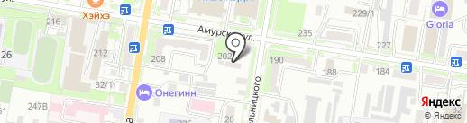 Пилот на карте Благовещенска