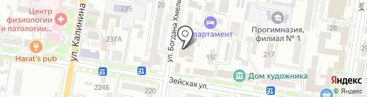seo-studio SERP на карте Благовещенска