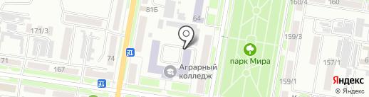 ЭнималСити на карте Благовещенска