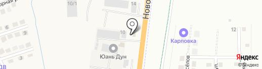 Эльнур на карте Благовещенска